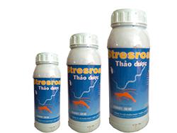 Thảo dược Ấn Độ - STRESROAK Tom