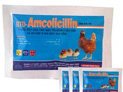Đặc trị bệnh tiêu hóa, hô hấp, tụ huyết trùng, tiêu chảy ở gia súc gia cầm - Amcolicillin