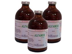 Đặ trị viêm tử cung, viêm vú, mất sữa (MMA) - ALFAMOX - L.A