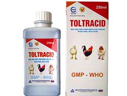 Đặc trị phức hợp bệnh cầu trùng ruột non, máu tươi - TOLTRACID