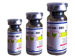 RTD ND - HB1